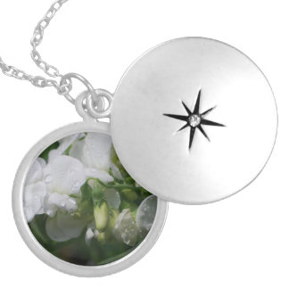 Pretty White Sweet Pea Flowers Round Locket Necklace