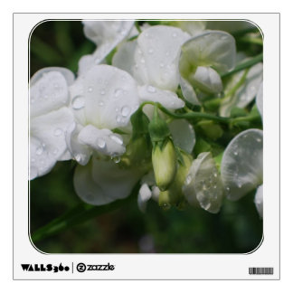 Pretty White Sweet Pea Flowers Wall Stickers