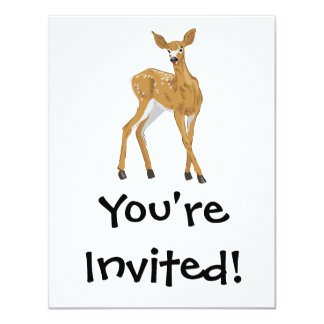pretty white-tailed baby deer standing card