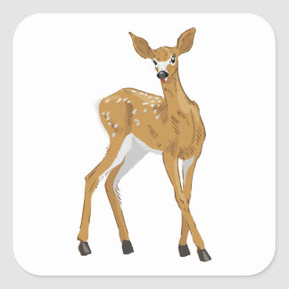 pretty white-tailed baby deer standing square sticker