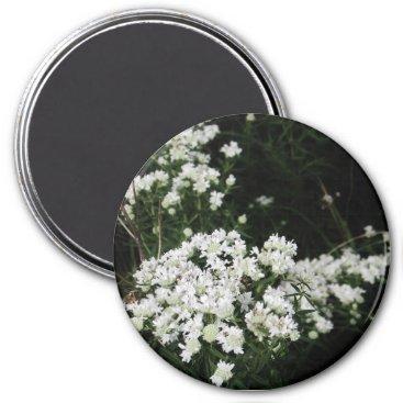 Beach Themed Pretty White Wildflower Magnet