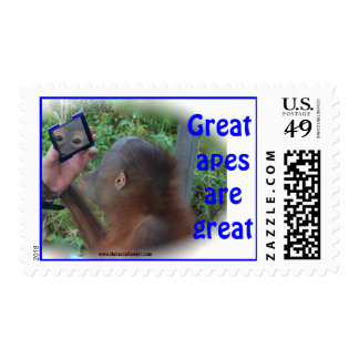 Pretty Wildlife Baby: Face in Mirror Postage