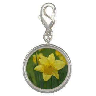Pretty Yellow Daffodil Charm