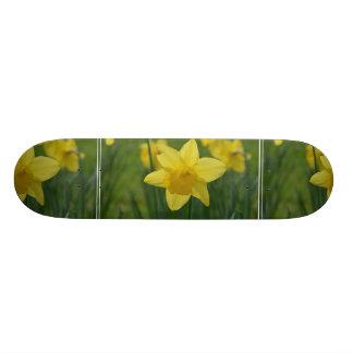 Pretty Yellow Daffodil Skateboard Decks