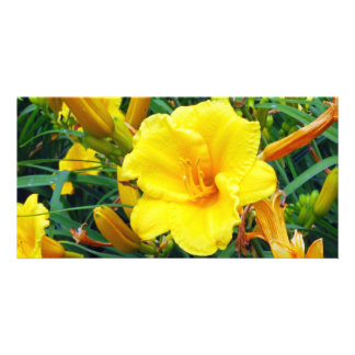 Pretty Yellow Flower Custom Photo Card