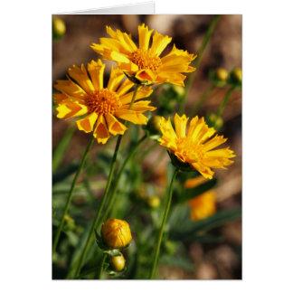 Pretty Yellow Flowers Card
