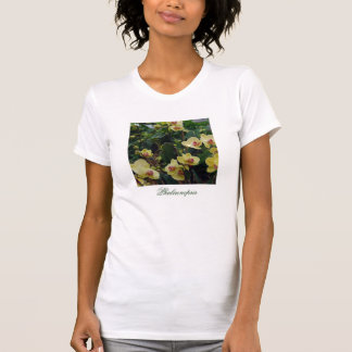 Pretty Yellow & Red Phalaenopsis Orchids Tee Shirt