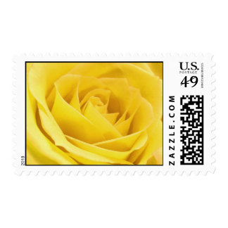Pretty Yellow Rose Postage Stamp