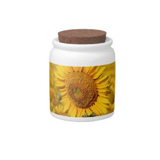 Pretty Yellow Sunflower Candy Jar