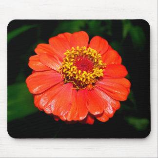 Pretty Zinnia Flower Mouse Pad
