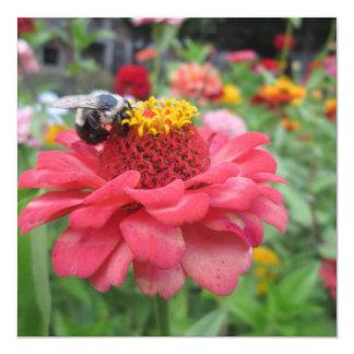Pretty Zinnia with Bee Card