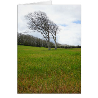 """""""Prevailing Wind"""" Greeting Card"""