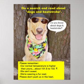 Prevención de la insolación poster