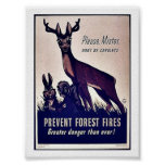 Prevenga los incendios forestales poster