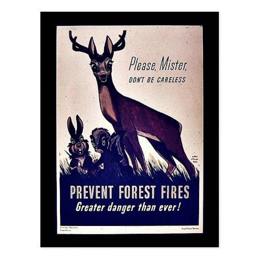 Prevenga los incendios forestales tarjeta postal