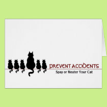 """""""Prevent Accidents"""" (cats) Card"""