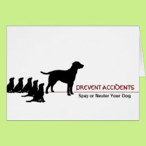 """""""Prevent Accidents"""" (dogs) Card"""