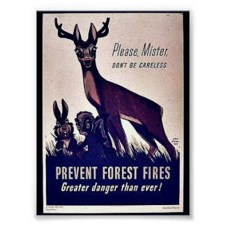 Prevent Forest Fires Poster