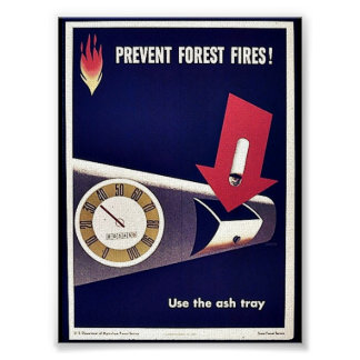 Prevent Forest Fires Print