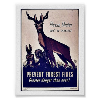 Prevent Forest Fires Posters