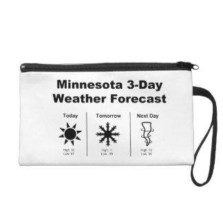 Previsión metereológica de Minnesota