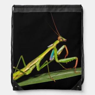 Preying mantis, Odzala, Kokoua National Park Drawstring Backpack