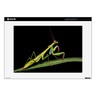 Preying mantis, Odzala, Kokoua National Park Skin For Laptop