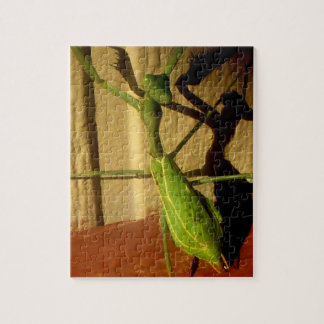 Preying Mantis Puzzle