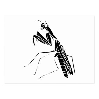 Preying Mantis Silhouette Postcard