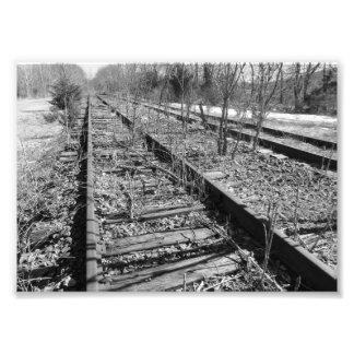 Pri fotográfico blanco y negro silencioso de las impresion fotografica