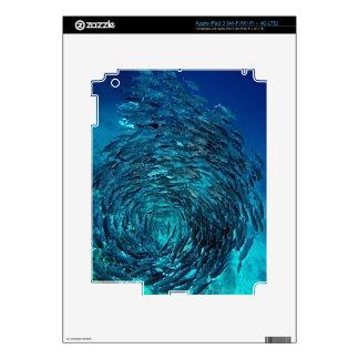 Priacántido trevally (sexfasciatus del Caranx), iPad 3 Pegatinas Skins