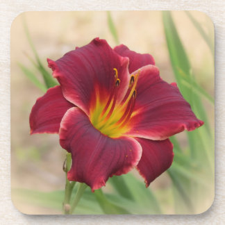 Priceless - Daylily Beverage Coaster