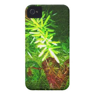 Priceless iPhone 4 Case
