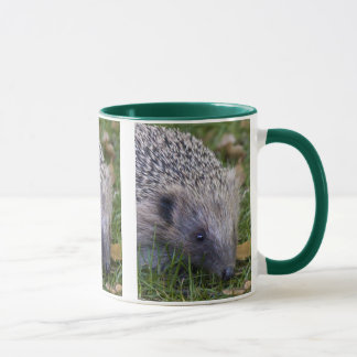 Prickles Mug