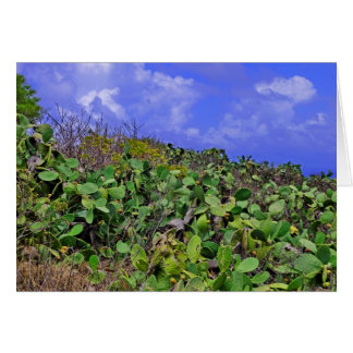 Prickley Pear Cacti Card