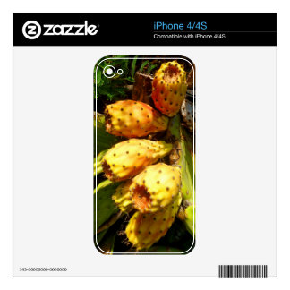 Prickley Pear Cacti Fruit Decals For The iPhone 4S