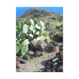 Prickley Pear Cacti Trail Canvas Print