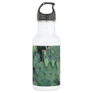 Prickley Pear Cactus Stainless Steel Water Bottle