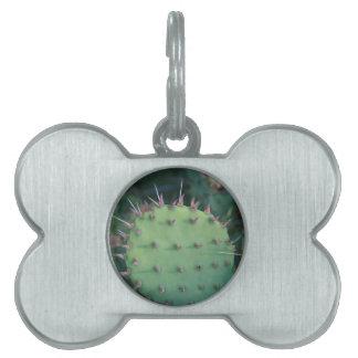 Prickley Pear Pad Pet Name Tag