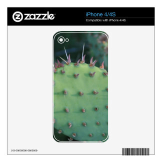 Prickley Pear Pad Skin For iPhone 4