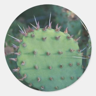 Prickley Pear Pad Round Sticker