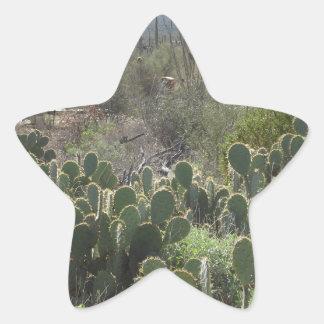 Prickley Pear Star Sticker