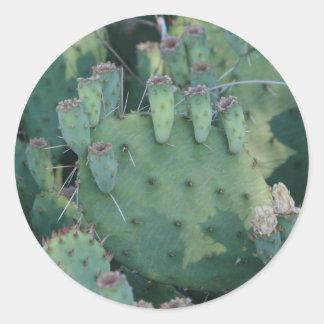 Prickley Pear Round Stickers