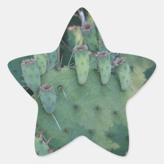 Prickley Pear Sticker