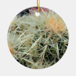 Prickly Barrel Cactus Ornaments