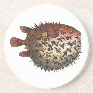 Prickly Bottle Fish Sandstone Coaster