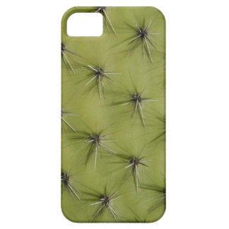 Prickly cactus iPhone case
