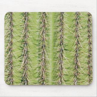 Prickly cactus needles print mousepad