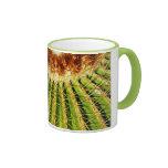 Prickly cactus plant coffee mug