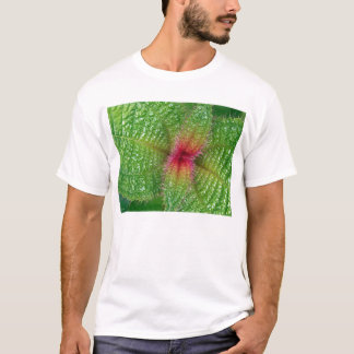 prickly curves T-Shirt
